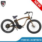 Latest strong big tyre snow electric e bike bicycle